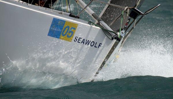 Seawolf Benalmadena regatta